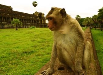 sabai-travel-cambodia-siemreap-tours-angkor-temples 07